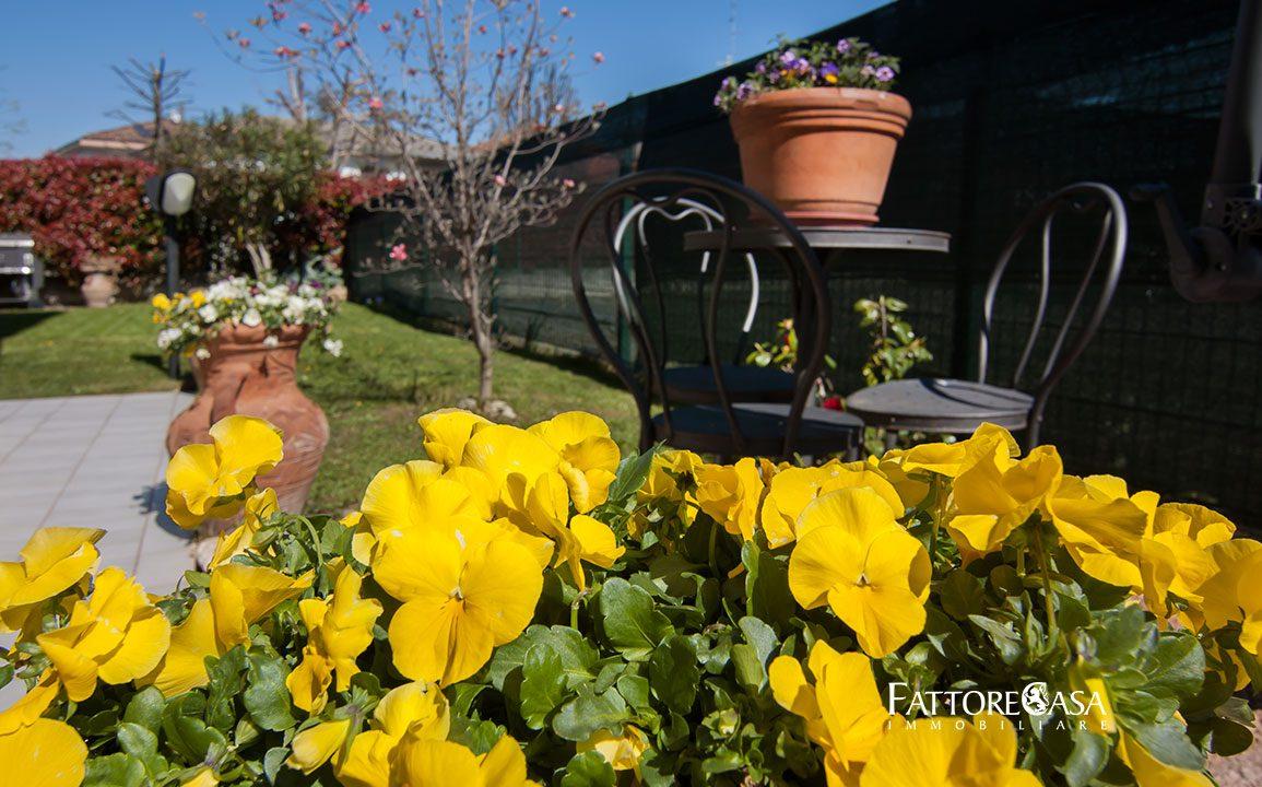 case-limido-comasco-bilocale-giardino-vendita-5